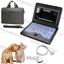 Ce Vet Veterinary Laptop Ultrasound Scanner Machine 3.5m Convex Probe, États-unis Fedex