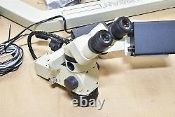 Global Urban Halogen Dental Microscope Unit Magnification Machine 115v Utilisé