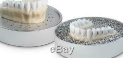 Modèle De Vide Dentaire Lab Bioart Formant La Machine Plastvac-p7
