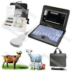 Vet Machine Echographe Portable Vétérinaire Pour Les Ovins / Chèvre / Porc, + Convex